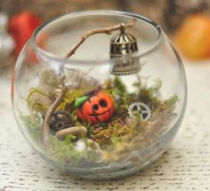 Halloween Terrariums @ West Union Library | West Union | Ohio | United States