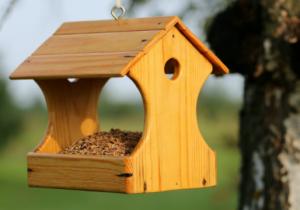 DIY Bird Feeder @ North Adams Library